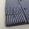 Parker Indigo Blue Stripe
